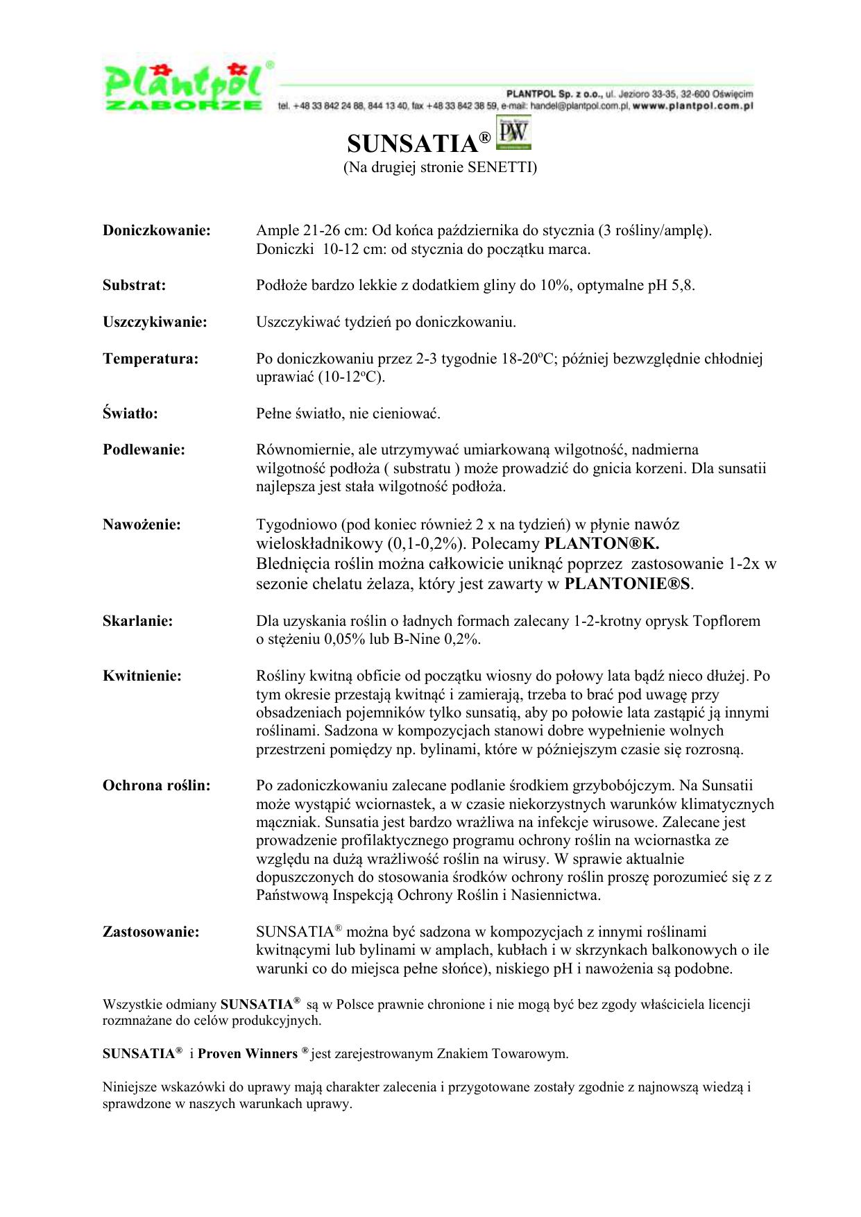 978c61c1127885 SUNSATIA® (Na drugiej stronie SENETTI) Doniczkowanie: Ample 21-26 cm: Od  końca października do stycznia (3 rośliny/amplę). Doniczki 10-12 cm: od  stycznia do ...