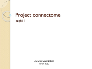 04-Project connectome_Lewandowska