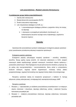 indywidualny plan działania podręcznik metodyczny