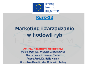 Marketing i zarz dzanie w zr  wnowa