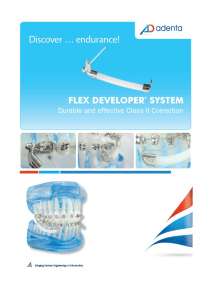 flex_developer_-_katalog_pl