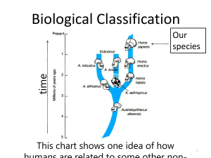 Biological Classification (1)